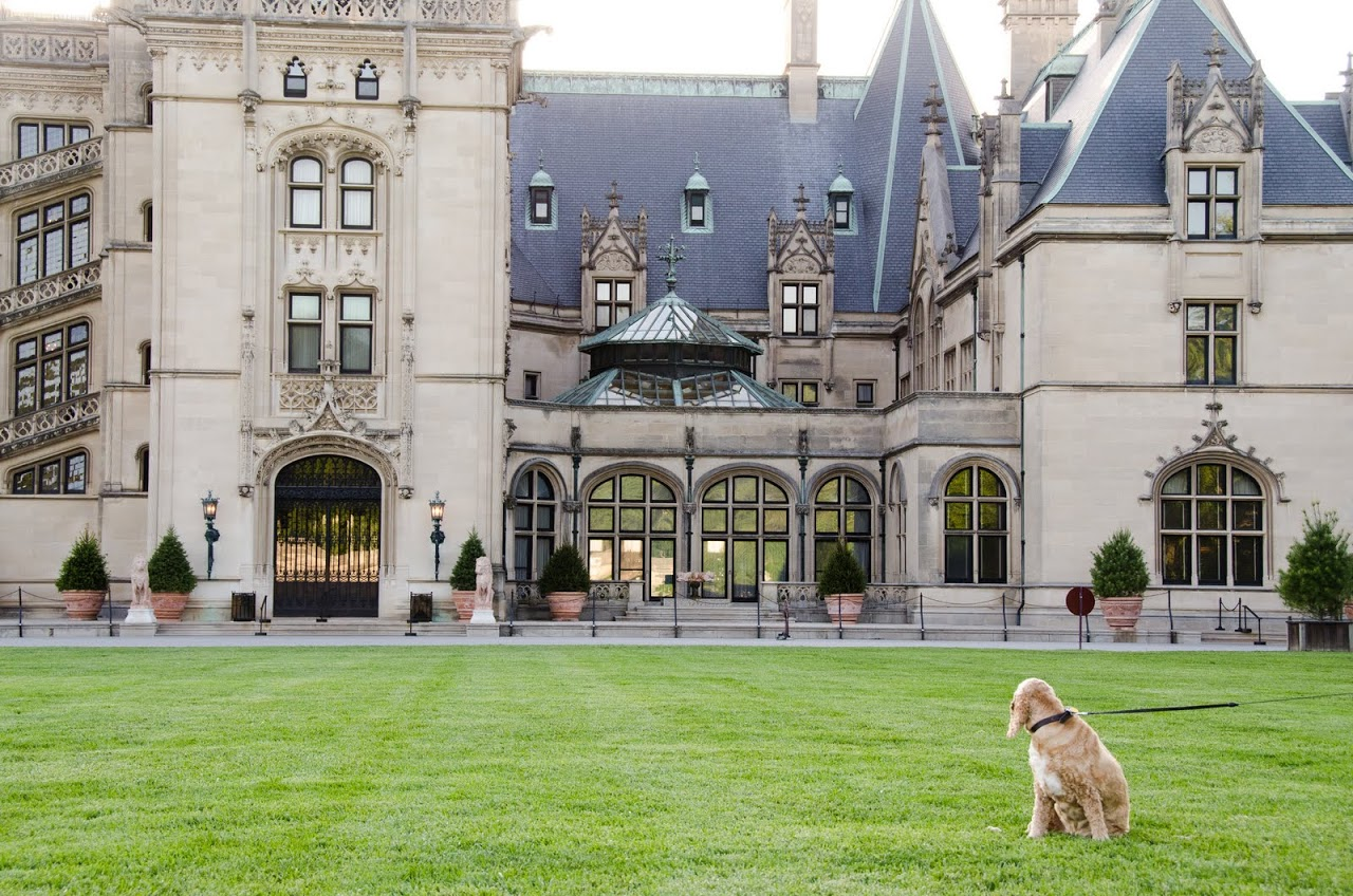 Chewy at the Biltmore Estate