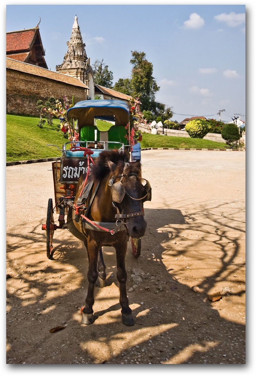 Horse drawn carriage in front of Wat Phra That Lampang Luang