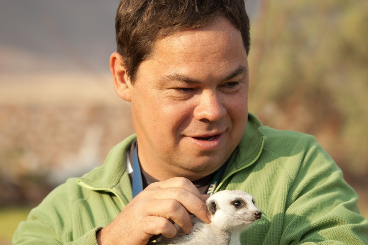 Meerkat with Jacques