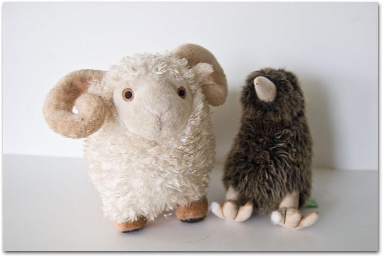 Sheep and kiwi toy